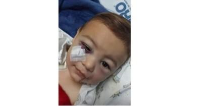 Bebê que sobreviveu ao ataque em escola infantil de Santa Catarina deixa a UTI